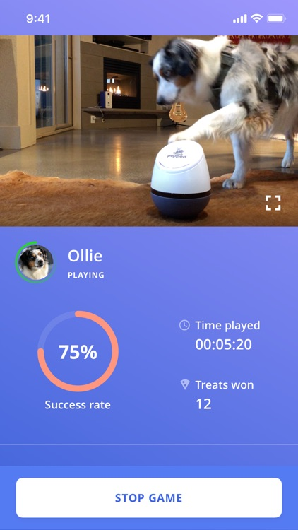 PupPod Rocker screenshot-3
