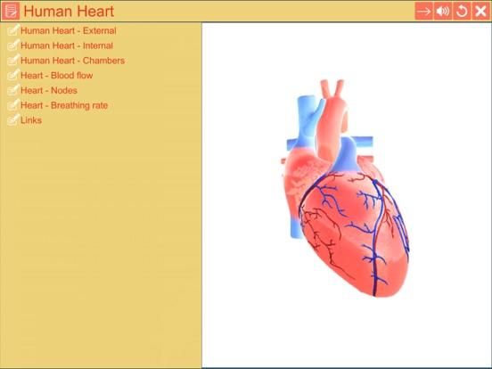 Cardiac pacemaker screenshot 8