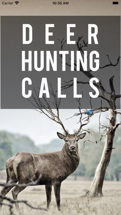 Easy Deer Hunting Calls: Sound screenshot-0