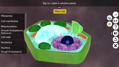 Prokaryotic & Eukaryotic cell screenshot 7