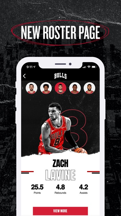 Chicago Bulls screenshot-4