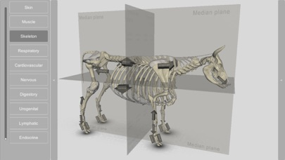 3D Bovine Anatomyのおすすめ画像5