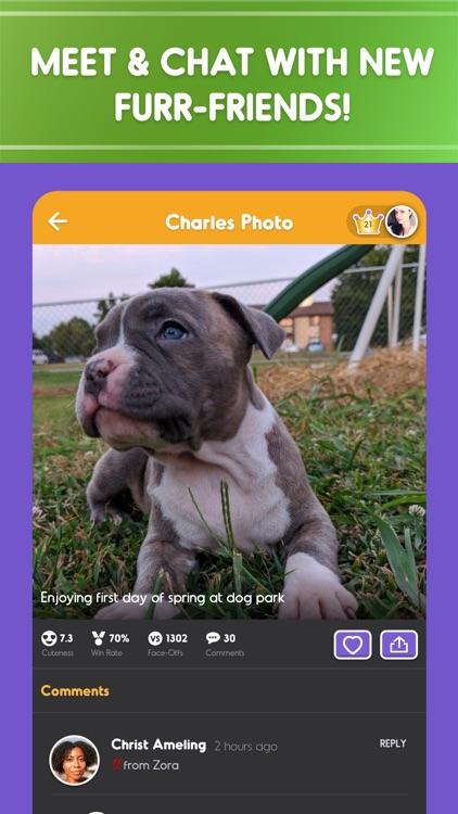 Pet Parade: Dogs & Cats Games screenshot-4