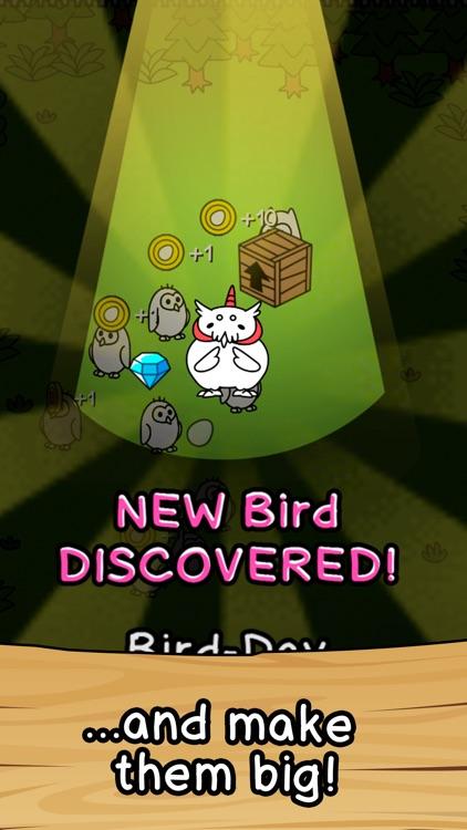 Birds Evolution Merge