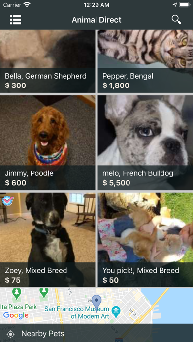 Animal Direct: USA Pet Rehome Screenshot