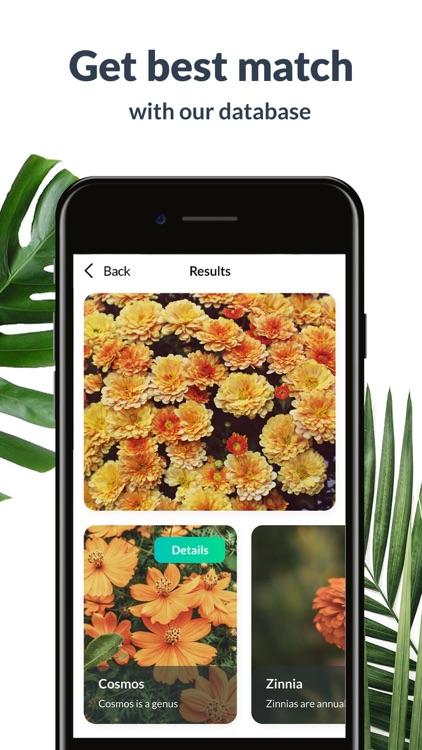 Plant Identification Lite screenshot-3