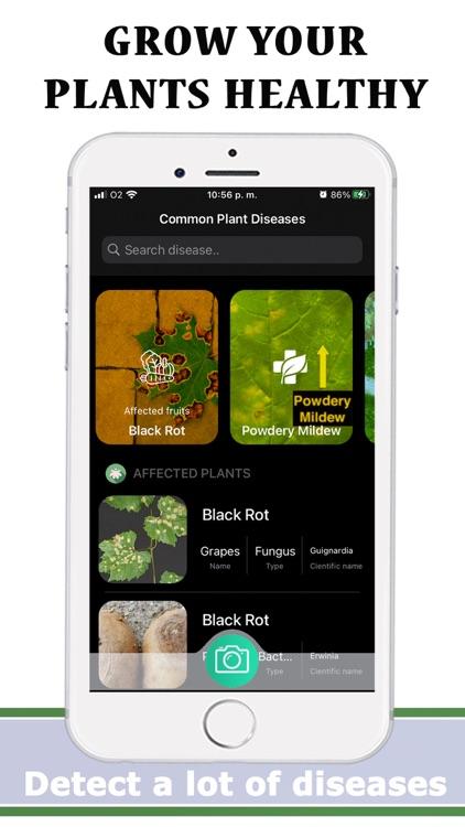 Plants Diseases Identifier