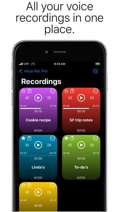 Voice Rec Proのおすすめ画像2