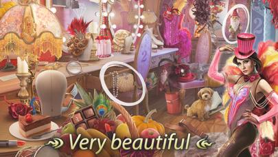 Secrets of Paris Hidden Object screenshot 3