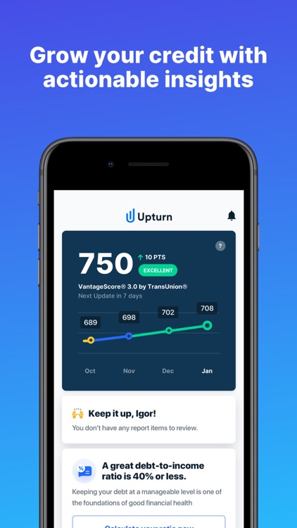 Upturn: Credit Report Disputes