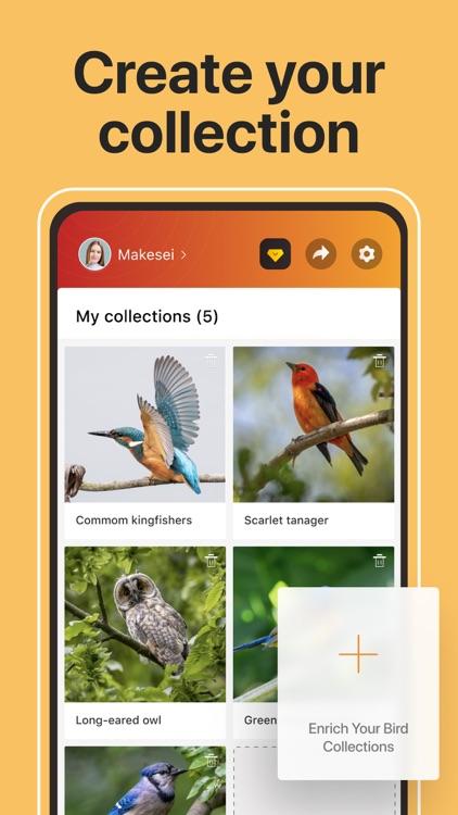 Picture Bird: Birds Identifier screenshot-6