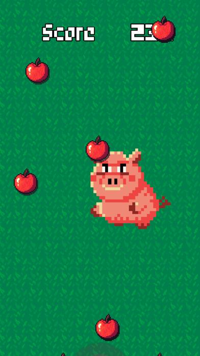 豚とりんご紹介画像2