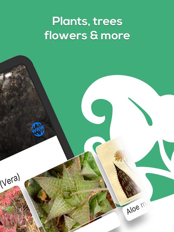 Plant Identifier - WhatPlant screenshot 8