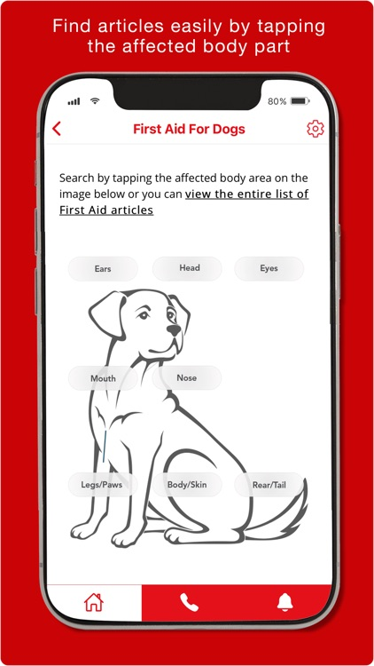 First Aid for Pets screenshot-4