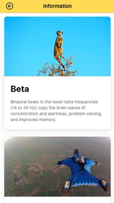 Audio King - Binaural Beats screenshot 3