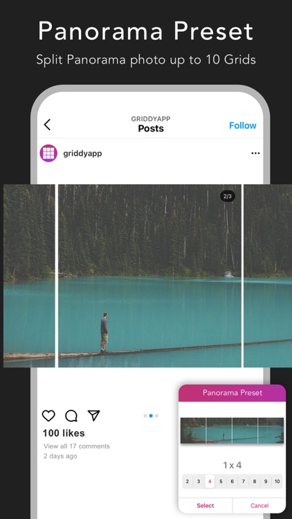 Griddy Pro: Split Pic in Grids screenshot-3