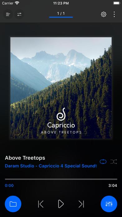 Capriccio プロのおすすめ画像2