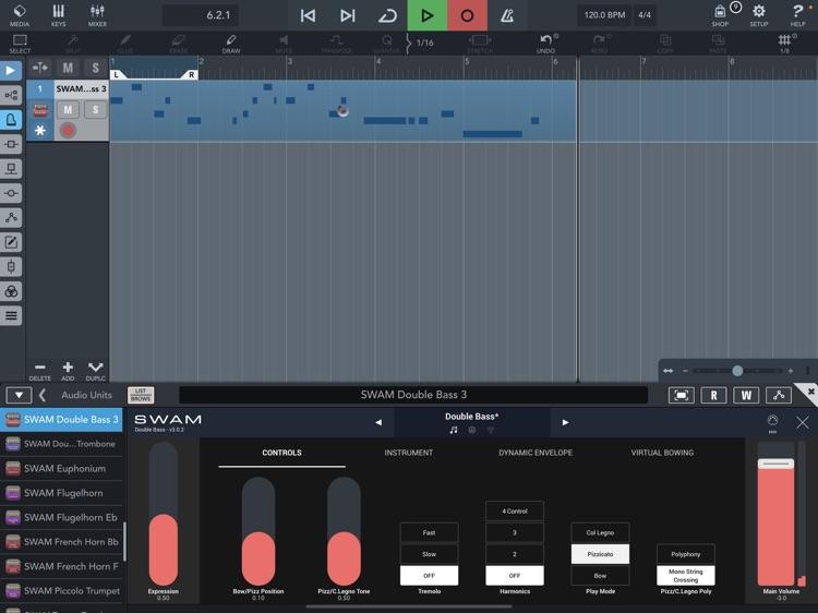 SWAM Double Bass screenshot-9