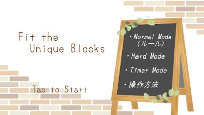 Fit the Unique Blocks screenshot 1