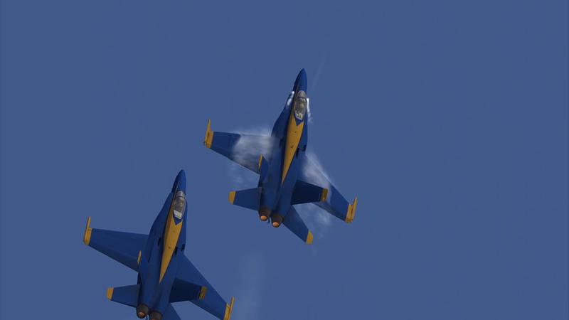 Blue Angels: Aerobatic Flight Simulator - Revenue & Download