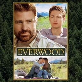 everwood 2 temporada