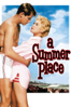Delmer Daves - A Summer Place  artwork