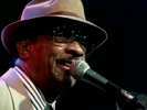 All the Love She Got Belongs to Me - Hubert Sumlin
