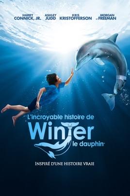 film l incroyable histoire de winter le dauphin