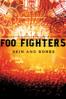 Foo Fighters - Skin & Bones  artwork