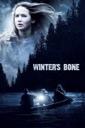 Affiche du film Winter\'s bone