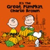 It's the Great Pumpkin, Charlie Brown wiki, synopsis