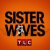 Sister Wives, Season 1 wiki, synopsis