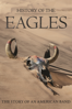 Alison Elwood - History of the Eagles  artwork