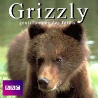 Télécharger Grizzly gentilhomme des forêts Episode 1