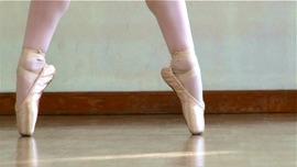 White Swan, Black Swan (An Excerpt from Tchaikovsky's Swan Lake Ballet)