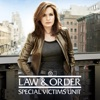 Law & Order: SVU (Special Victims Unit), Season 13 wiki, synopsis