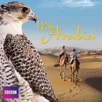 Télécharger Wild Arabia Episode 2