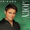 The Best of Joey wiki, synopsis
