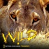 National Geographic Channel: Wild - Last Stand of the Great Bear