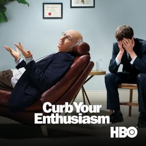Curb Your Enthusiasm, Season 7