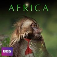 Télécharger Africa Episode 6