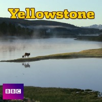 Télécharger Yellowstone, Series 1 Episode 3