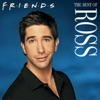 The Best of Ross wiki, synopsis