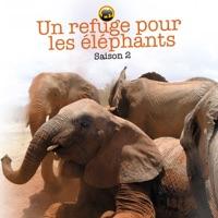 Télécharger Un refuge pour les éléphants, Saison 2 Episode 2
