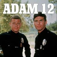Télécharger Adam 12, Season 1 Episode 4