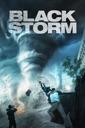 Affiche du film Black Storm