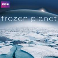 Télécharger Frozen Planet Episode 7