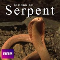 Télécharger Le monde des serpents Episode 1