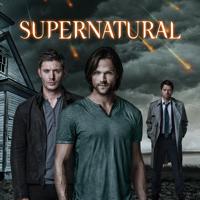 Supernatural - Supernatural, Season 9 artwork