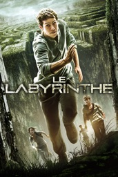 Screenshot Le Labyrinthe